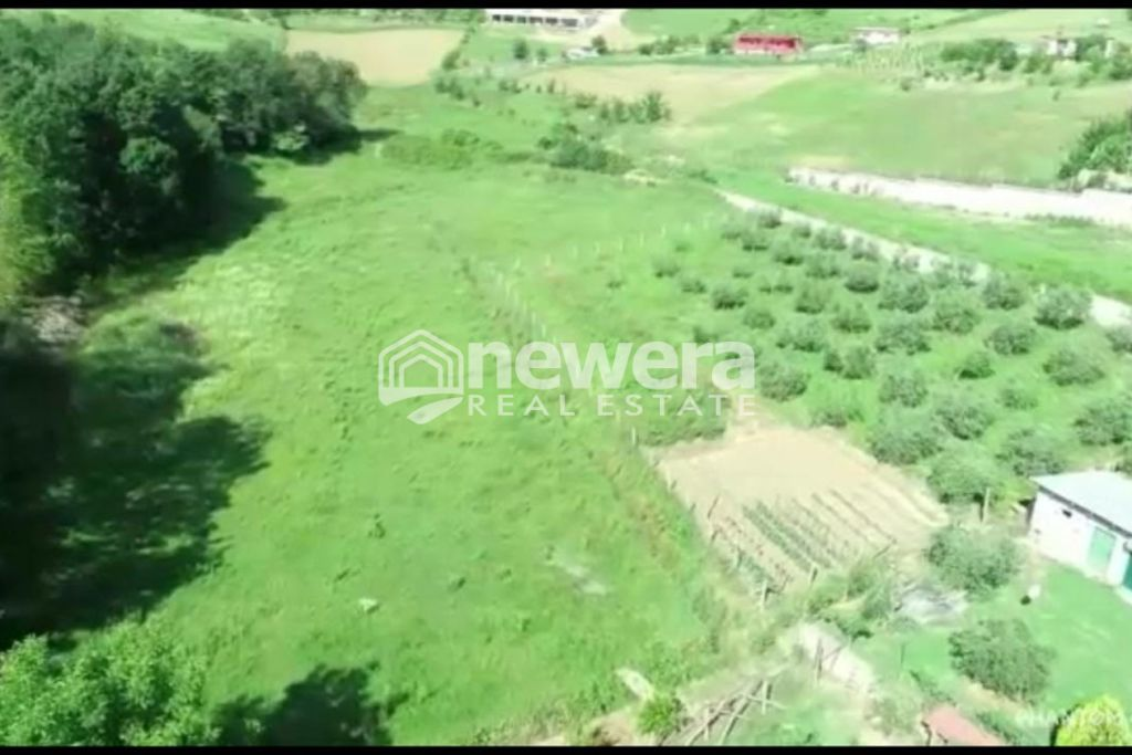 Sell Villa together with 9880 m2 Land