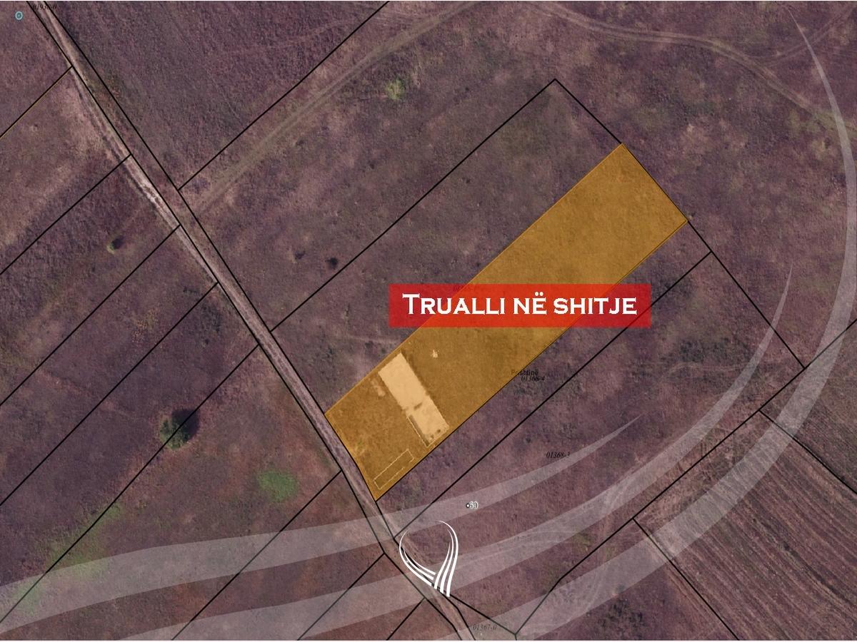 Shitet trualli 25ari në zonën komerciale Magjistralja Prishtinë – Mitrovicë