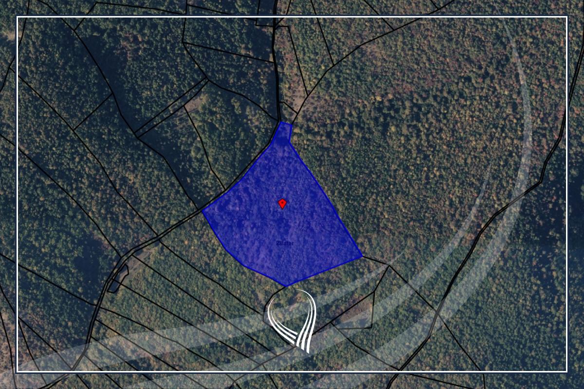 Shitet toka 3 hektarë e 3.18 ari në Zllatar